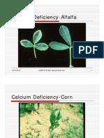 AGRY515DeficiencySymptomsSecondaryNutrients