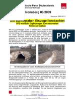 090211BvK03 - EisvogeBüntewl