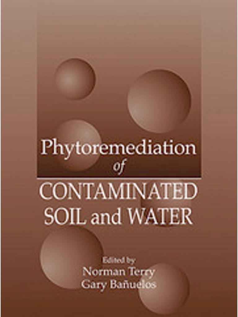 Phytoremediation Of Contaminated Soil And Water Lead Chelation Palanta L Chairs Big 90 Bean Bag Cover Abu