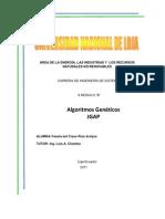 Manual JGAP y Algoritmos Genéticos.docx