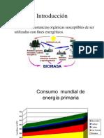 biomasa_clase (1)