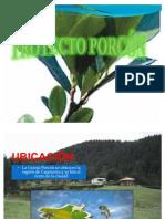 Expo Granja Porcon