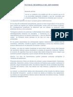 Factores Que Afectan El Desarrollo Del Ser Humano (1)