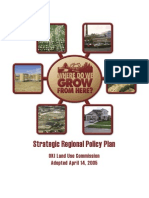 OKI Strategic Regional Policy Plan