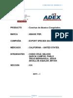 Conchas de Abanico - California - Estados Unidos