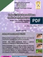 TEMA 17 Virus dos Por Artropodos y Roedores