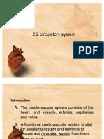 2.2circulatory System