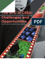 2010 BPO Monograph (USC)