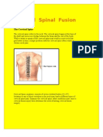 Spine Surgery in India at Delhi & Mumbai at Affordable Cost