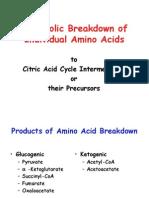 (7) AA Metabolism II