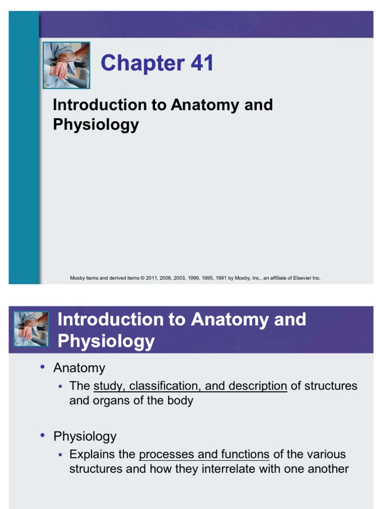 Fundementals in nursing 6th edition Power Point on Introduction to ...