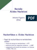 Revisao acidos nucleicos