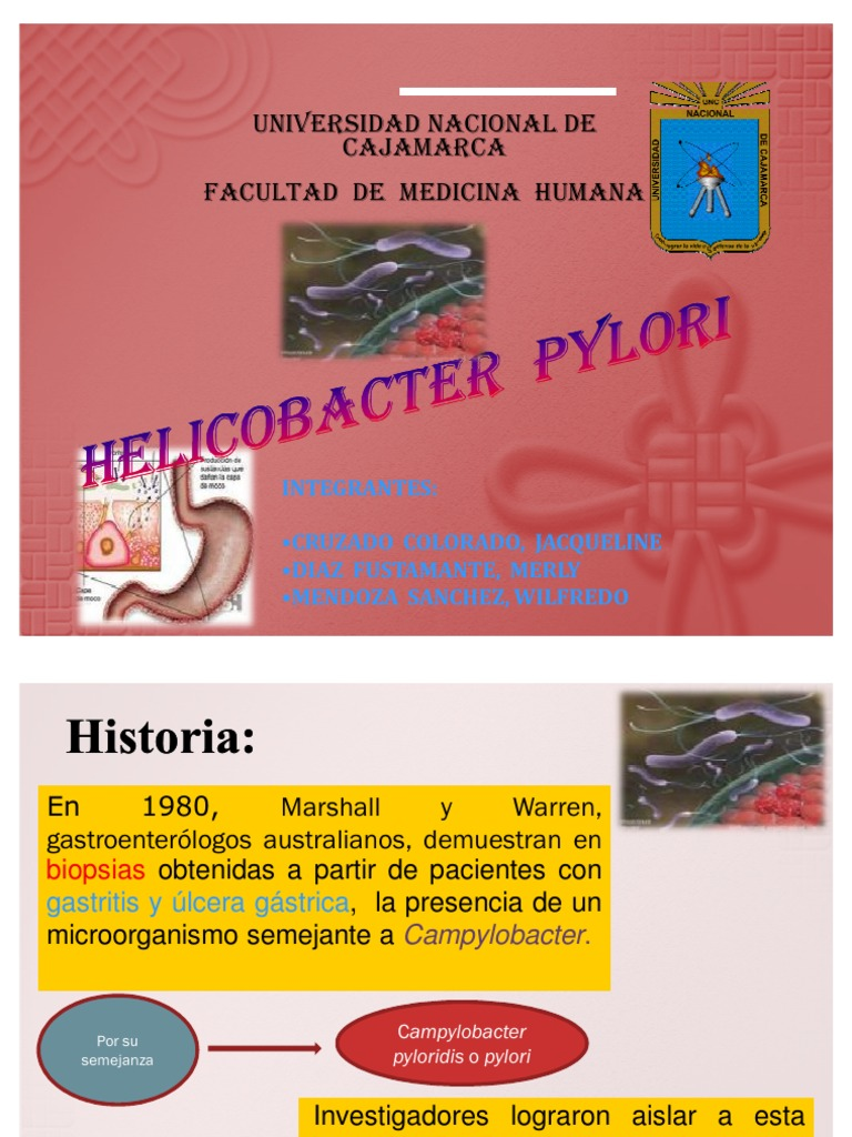 menu para el helicobacter pylori