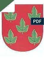 Brasão dos FIGUEIREDO-sapo.pt