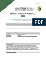 Formato Proyectos - Formacion Agrciola - Ierjas