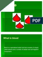 L13 BLOOD F