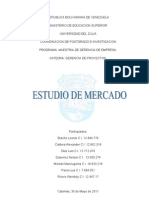 Estudio de Mercado Trabajo Final