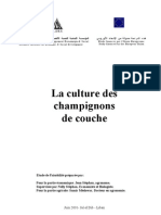Culture Des Champignons de Couche 13p