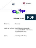 Formula Rio GSP- Los Petroleros Rev 01
