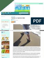 Www Vitonica Com Wellness Caminar Un Ejercicio Ideal