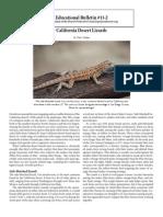 CA Desert Lizards | DPC educational bulletin 11-2