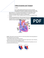 Science Form 3 Blood Circulation and Transport
