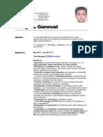 Elridge Gammad CV-1A (1)