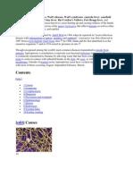 dott francesco romanelli endocrinología y diabetes