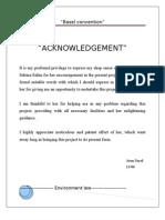 Basel docx Environment Law