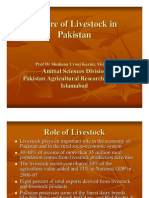 Future of Livestock in Pakistan by Shahana