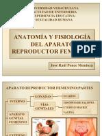 anatomiayfisiologadelaparatoreproductorfemeninoymasculino-110520151903-phpapp02