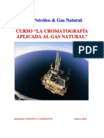 Curso Gas Natural 2011 in Company