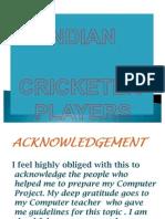 Indian Crickter Players