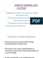 Applications of Animal Cell Culture