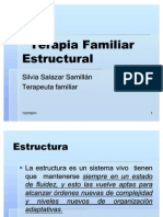 Los términos de la terapia estructural