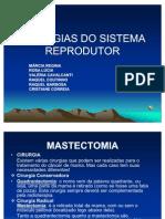 Cirurgias Do Sistema Reprodutor