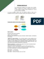 RESINAS_DENTALES[1]
