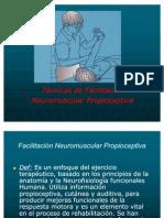 Técnicas de Facilitación Neuromuscular Propioceptiva