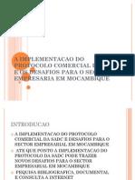 A Implementacao Do Protocolo Comercial Da Sadc e