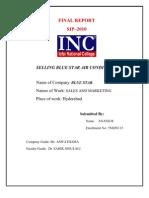 Final Report;3