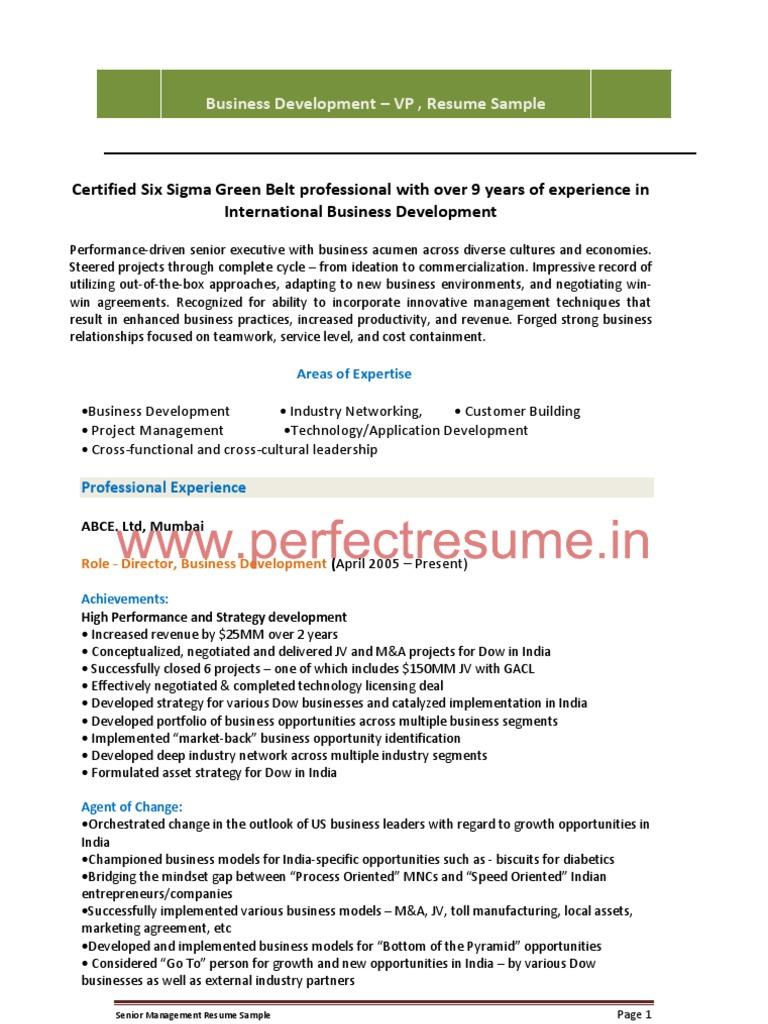 International Business Development Manager Resume Sample Business