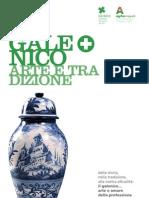 Il Galenico - Arte e tradizione - Anno 2 n. 1