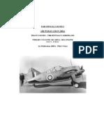 Buff Pilot Manual