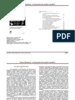 01 Gastón Bachelard - La formación del espiritu cientìfico - Intro y cap 1
