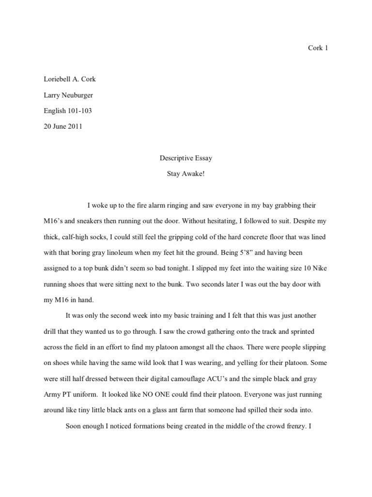English ap essay prompts