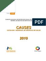 Causes 2010 y Anexos