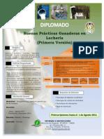 Afiche Diplom. Buenas Practicas