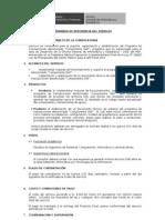 01_TDR Soporte Capacitación y Estabilización Programa de Transacciones Componente SIAF_Leonardo Torres(2)_01849