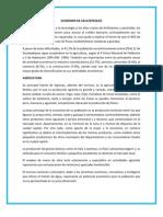 ECONOMIA DE SACATEPEQUEZ