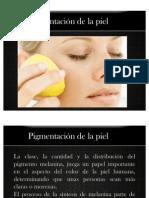 Pigmentación de la piel